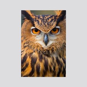 Eagle Owl Rectangle Magnet