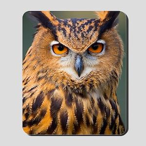 Eagle Owl Mousepad
