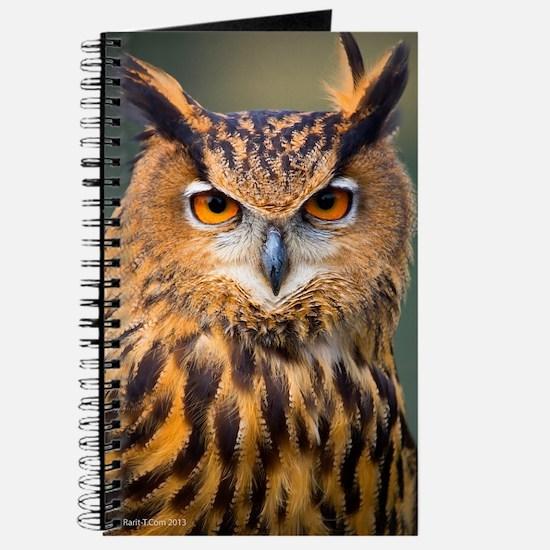 Eagle Owl Journal