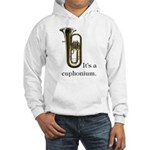 It's a Euphonium Hooded Sweatshirt