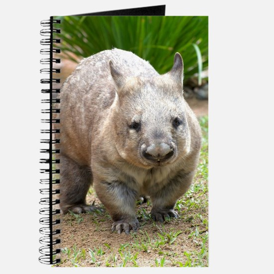 Common wombat - vombatus ursinus Journal