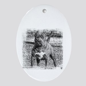 American Hero Pitbull Dog Oval Ornament