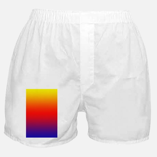 Texas Independence Centennial Half Do Boxer Shorts