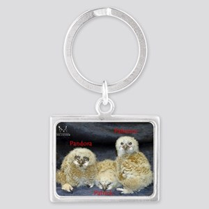 2013 Owlets First Banding Landscape Keychain