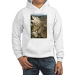 Grand Canyon of the Yellowstone River Hooded Sweat