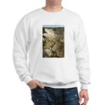 Grand Canyon of the Yellowstone River Sweatshirt