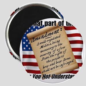 Second Amendment 1 Dark Magnet
