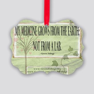 Medicine From The Earth Picture Ornament