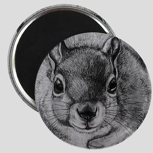 Squrrel Sketch Magnet