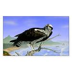 Osprey: Rectangle Sticker