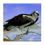 Osprey: Tile Coaster