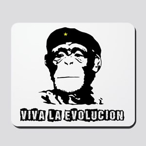 Human Evolution Mousepad
