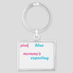 Pink or Blue Landscape Keychain