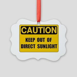 Direct Sunlight Picture Ornament