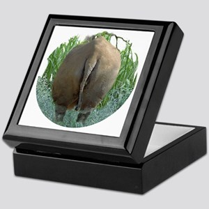 round rhino BF Keepsake Box