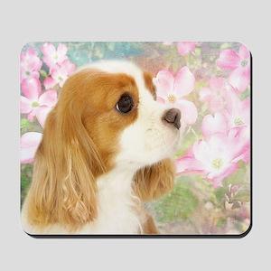 Spring Dogwood Cavalier King Charles Spa Mousepad