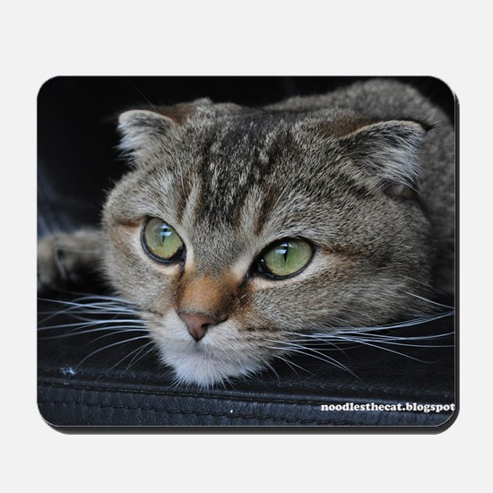 Noodles the cat thinking about you - pos Mousepad