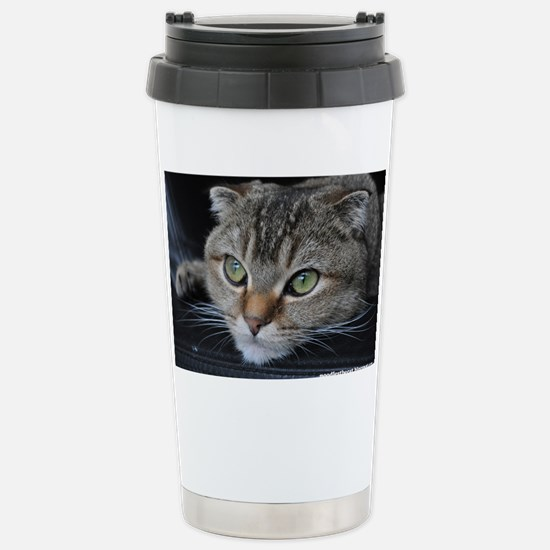 Noodles the cat thinkin Stainless Steel Travel Mug