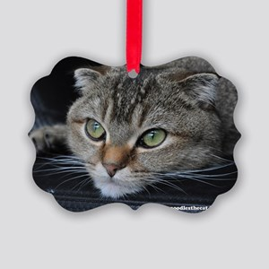 Noodles the cat thinking about yo Picture Ornament