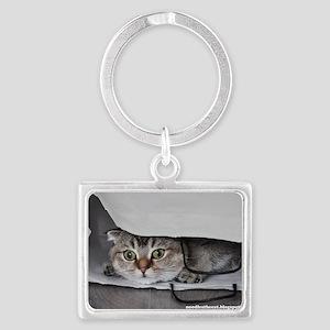 Noodles the cat bag - postcard  Landscape Keychain