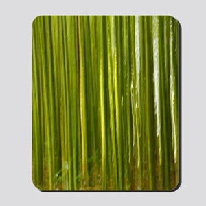 Bamboo abstract Mousepad