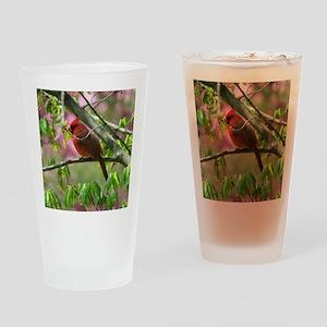 CD69x70 Drinking Glass