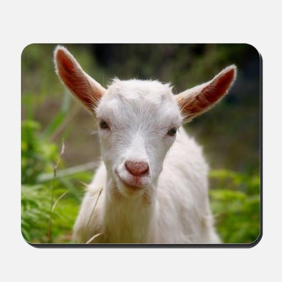 Baby goat Mousepad