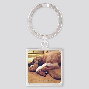 Dog with toy 1 Square Keychain