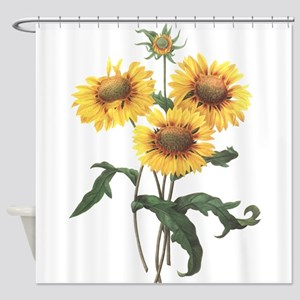 Redoute Sunflowers Shower Curtain