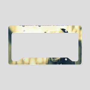 Boomer (pure love) License Plate Holder