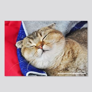 Noodles the cat greeting  Postcards (Package of 8)