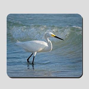 Snowy egret on the beach Mousepad