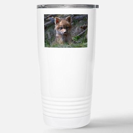 baby fox Stainless Steel Travel Mug