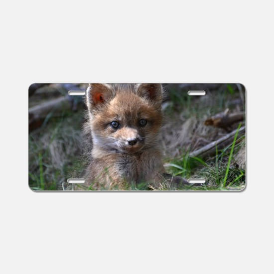 baby fox Aluminum License Plate