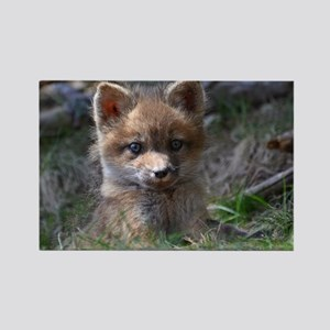 baby fox Rectangle Magnet