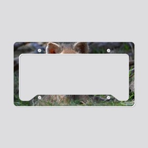 baby fox License Plate Holder