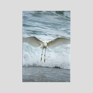 Born of sea-foam Rectangle Magnet