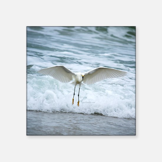 """Born of sea-foam Square Sticker 3"""" x 3"""""""