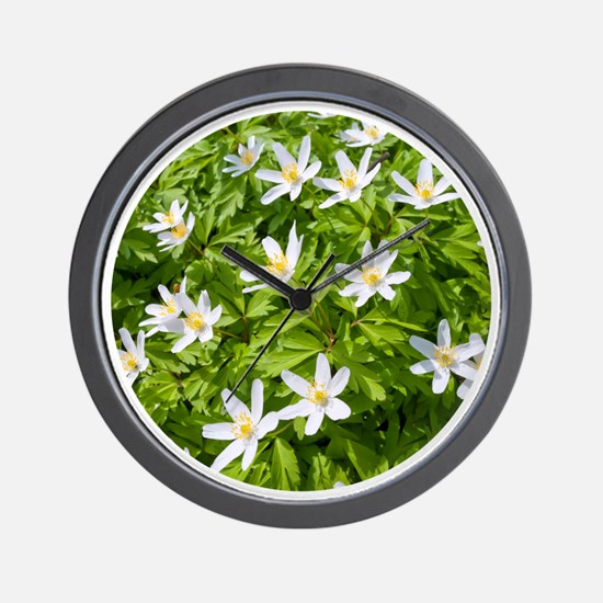 Wood Anemone Wall Clock