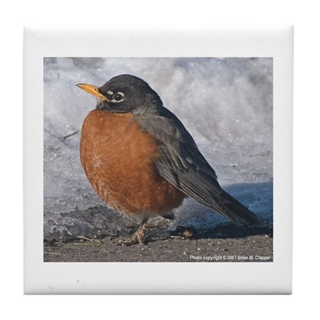 Robin Red-breast Tile Coaster