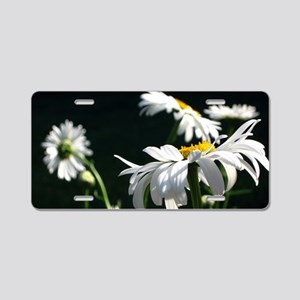 Daisy Dream Aluminum License Plate