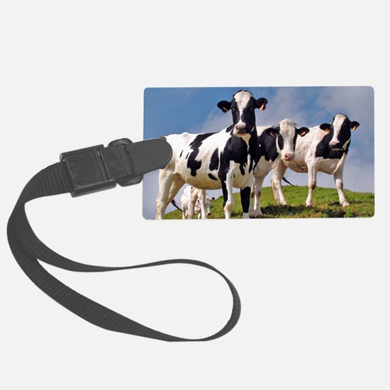 Family portrait Luggage Tag