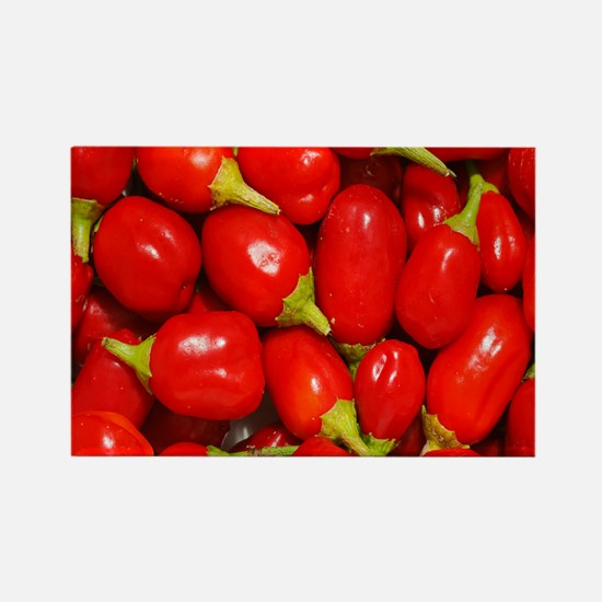 Red peppers Rectangle Magnet
