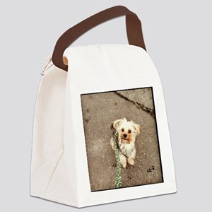 Joey Canvas Lunch Bag