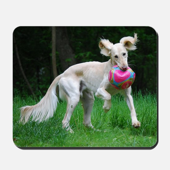Ears-Out Saluki Ball Play Mousepad
