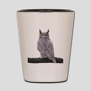 Great Horned Owl-1 Shot Glass
