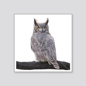 "Great Horned Owl-1 Square Sticker 3"" x 3"""