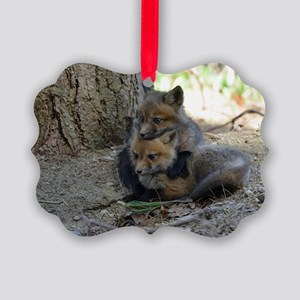 kits head on sib Picture Ornament