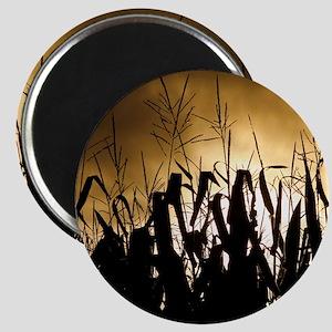 Corn field silhouettes Magnet