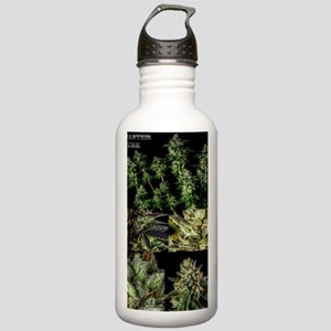 Master Kush Poster Stainless Water Bottle 1.0L